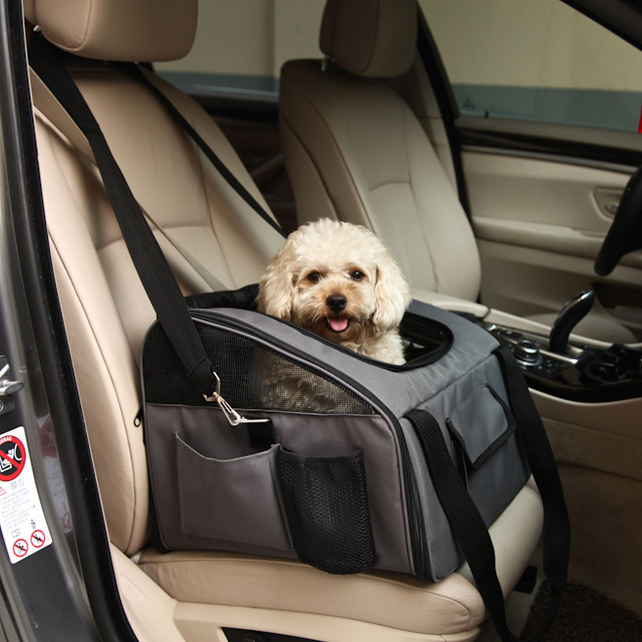 Using crate for your dog when it is in your car