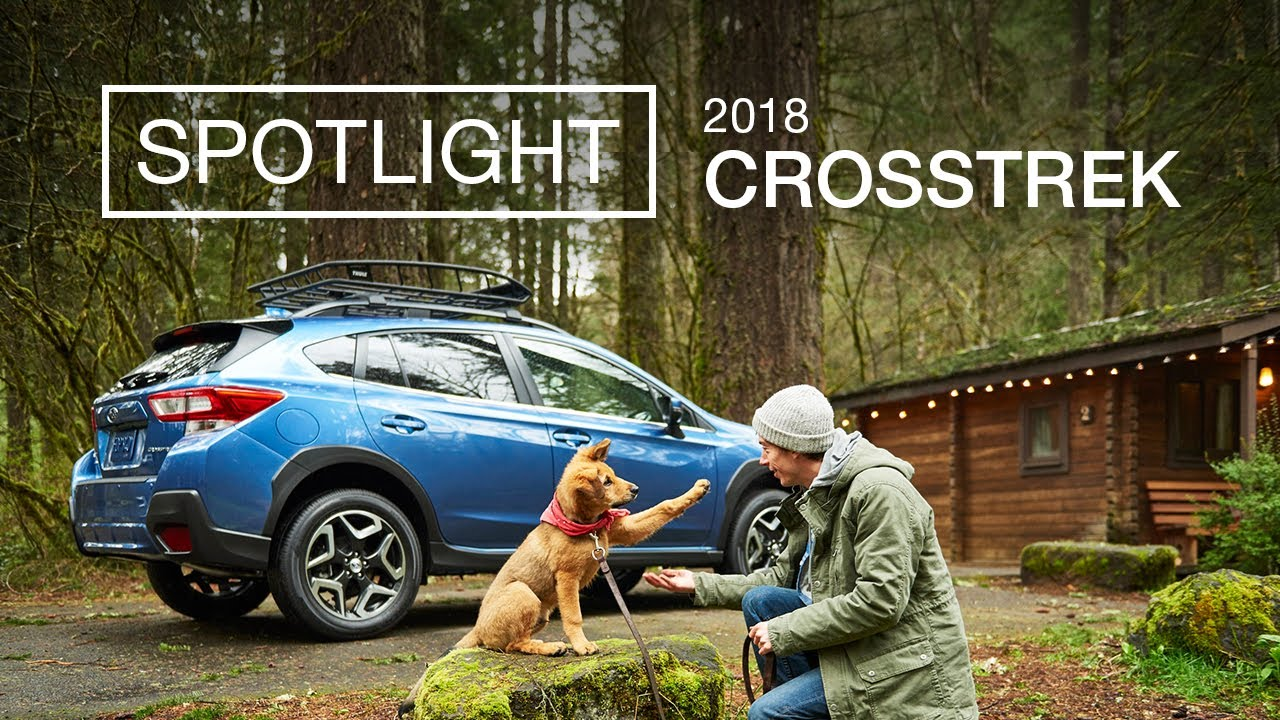 Subaru Crosstrek with pet